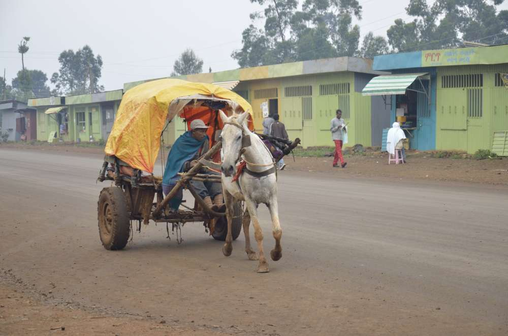 Horse drawn carriagein Debre Marcos, Ethiopia
