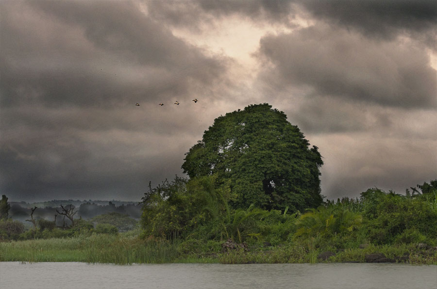 Stormy sky on Lake Tana, Ethiopia